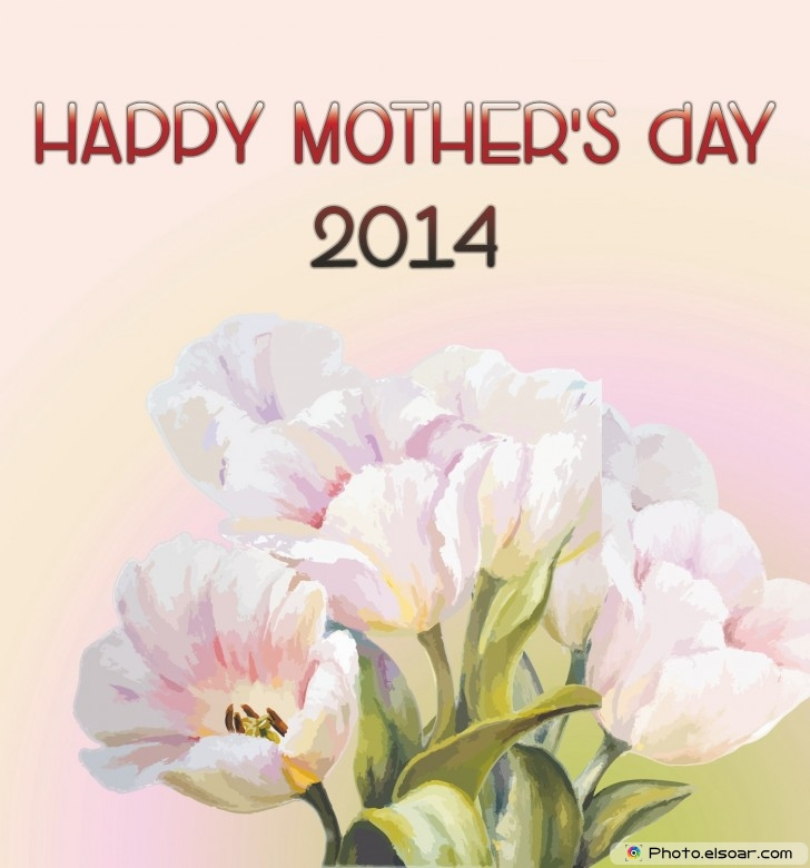 2014 Mothers day flowers card On pink background