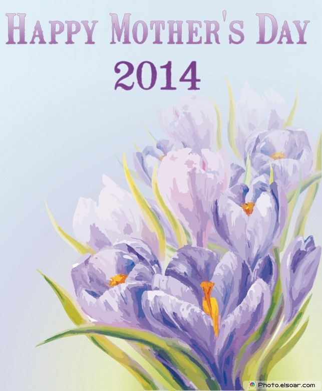 2014 Mothers day flowers card On purple flowers