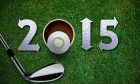 2015 In A Golf Course