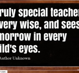 A truly special teacher is very wise