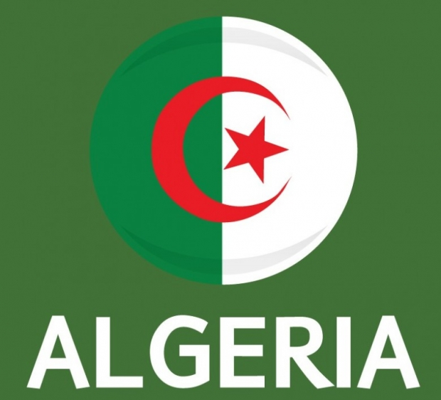Algeria Flag FIFA World Cup