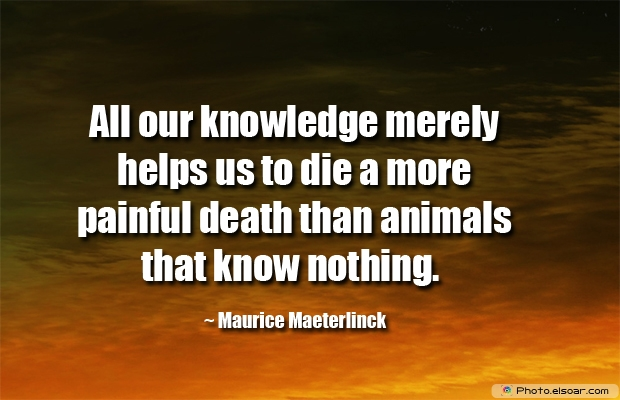 All our knowledge merely