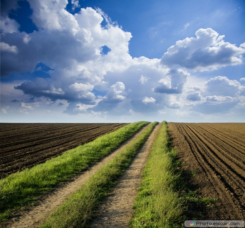 Arable Land In Photos Amp Wallpapers Elsoar
