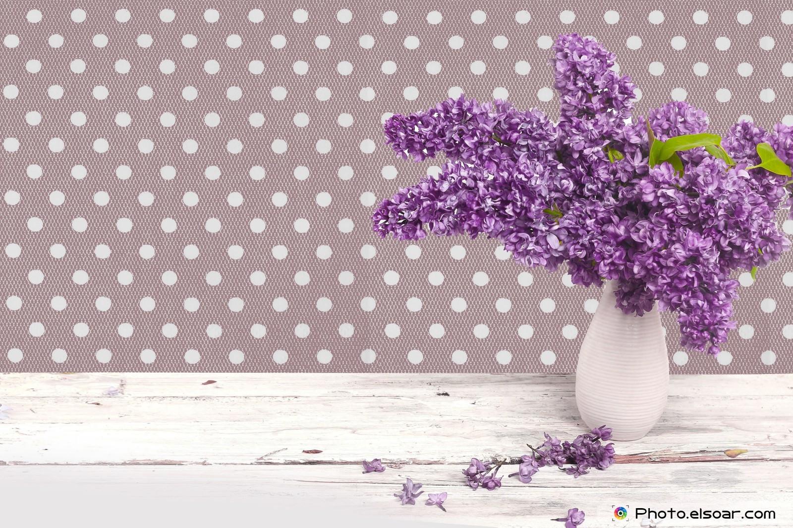 download wallpaper 1024x600 lilac - photo #32