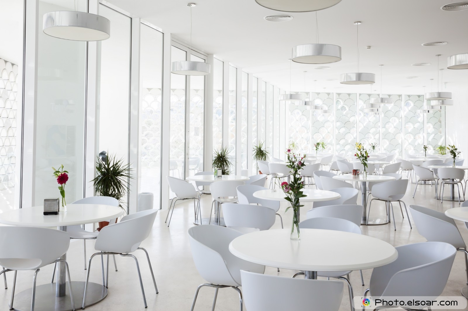 25 Cafe Interior Design Photos additionally Watch together with Ideas For Bathroom Design Minimalist And Modern Restrooms 2858 furthermore White Shark Of London also CarInteriorRetrims. on classic italian interior design