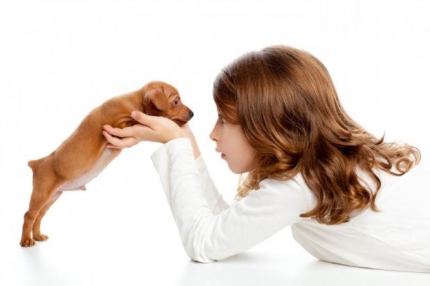 Brunette profile girl with dog puppy mascot mini pinscher