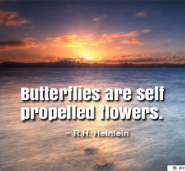 Butterflies are self propelled