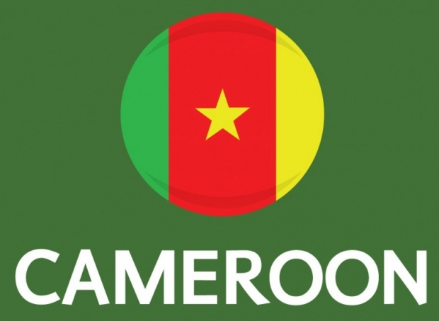 Cameroon Flag FIFA World Cup