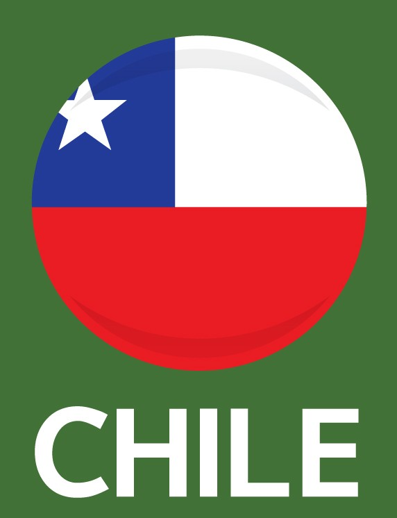 Chile Flag FIFA World Cup