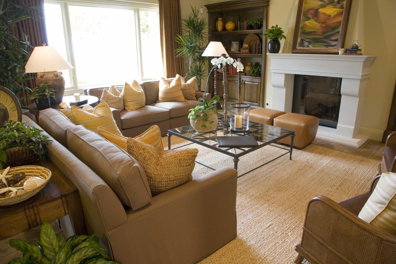 Comfortable Luxury Home Living Room