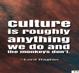 Culture is roughly anything