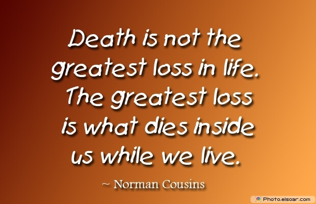 Norman Cousins, Death Quotes, Death Sayings, Quotes Images, Quotes About Death