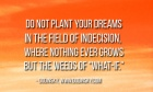 Do not plant your dreams