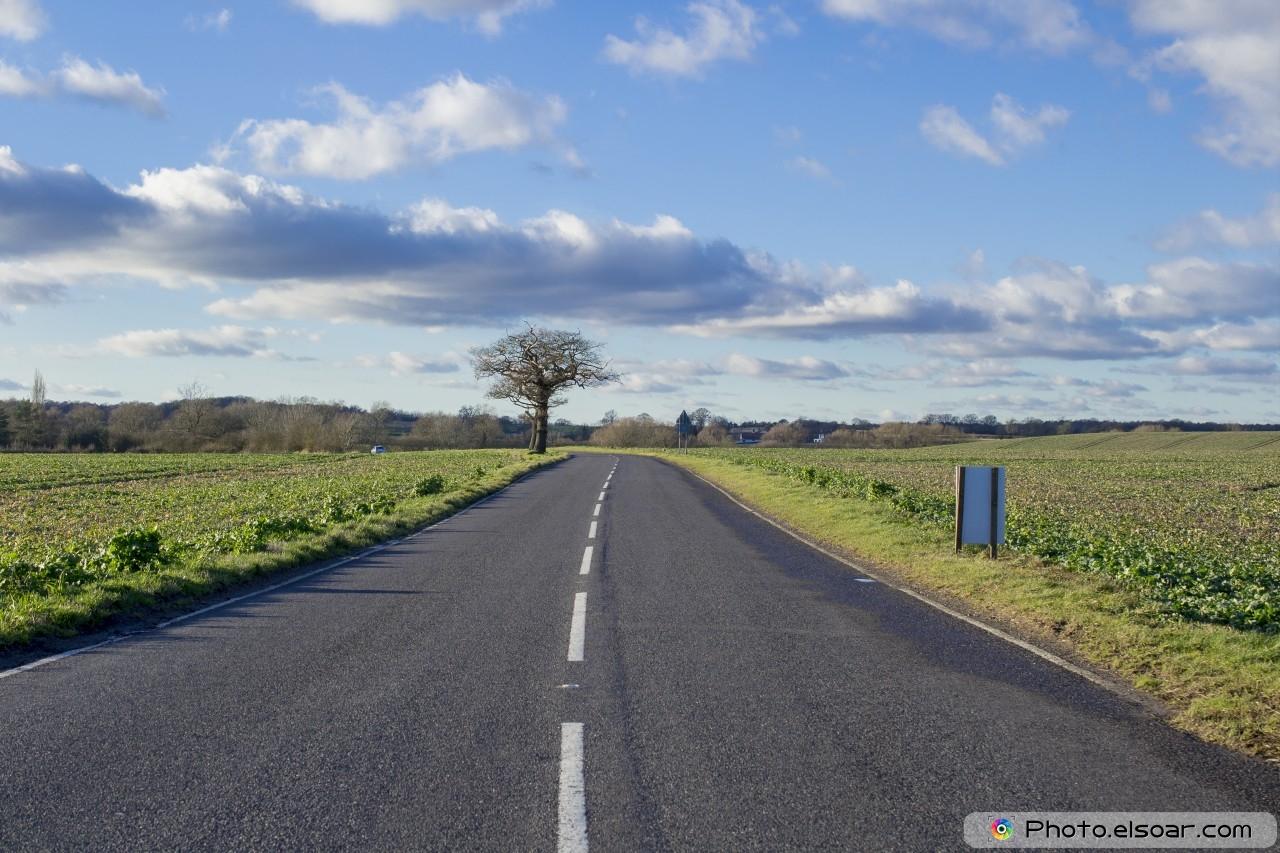 Читать разухабистая дорога часть 2 2 фотография