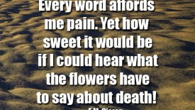 Every word affords me pain…
