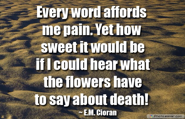 Every word affords me pain