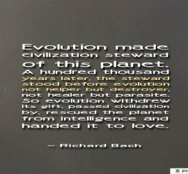 Evolution made civilization