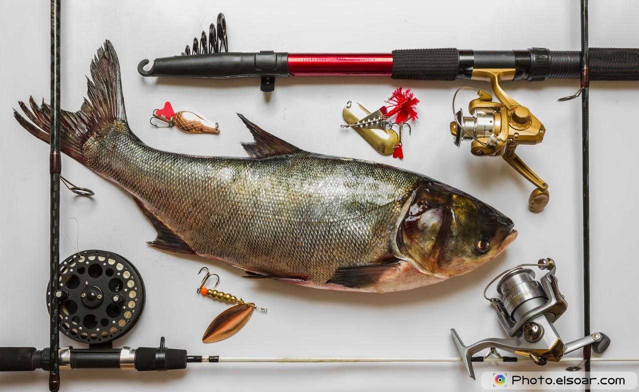 купить рыбные снасти б у