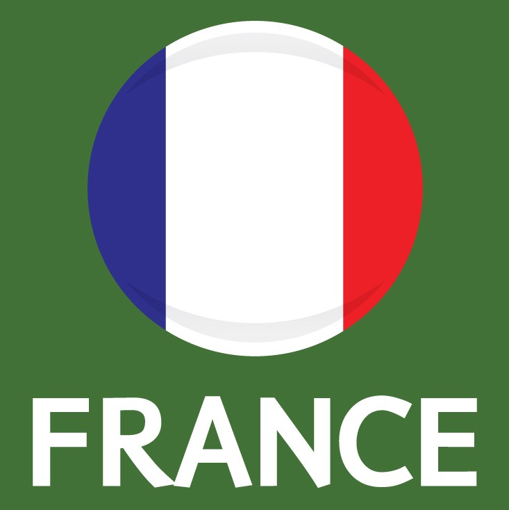 France Flag FIFA World Cup