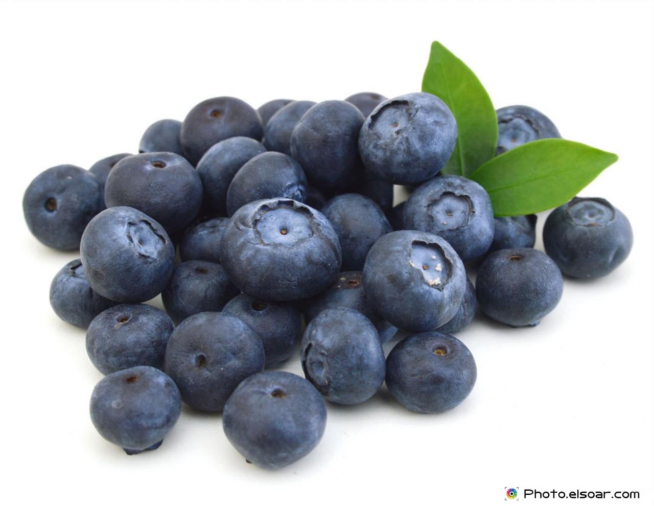 Fresh Blueberri...