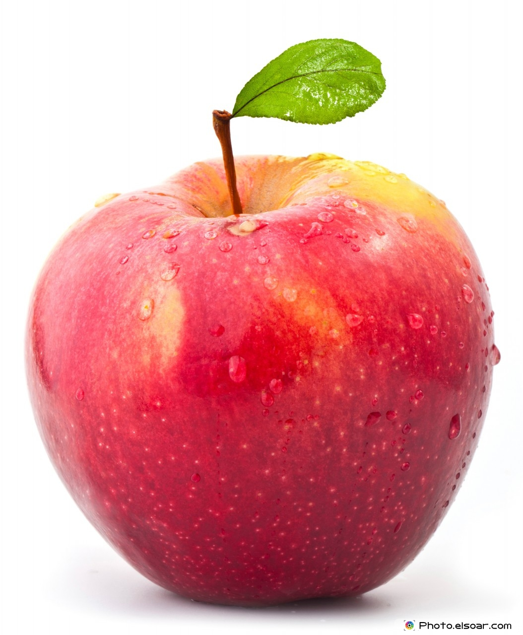 Fresh Red Apple Picture