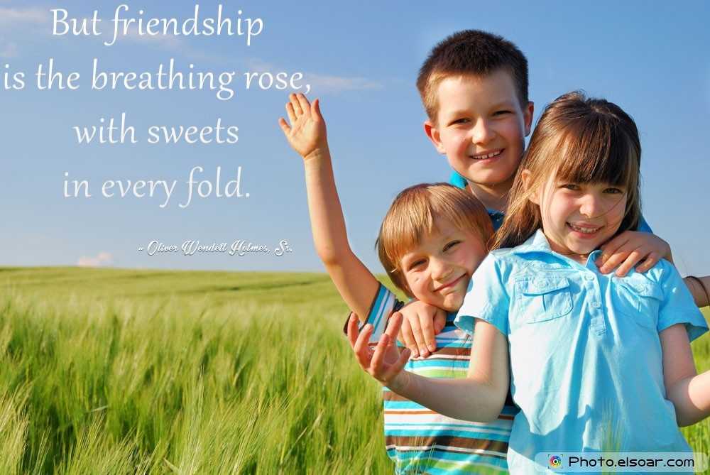 Friendship Quote By Oliver Wendell Holmes, Sr.
