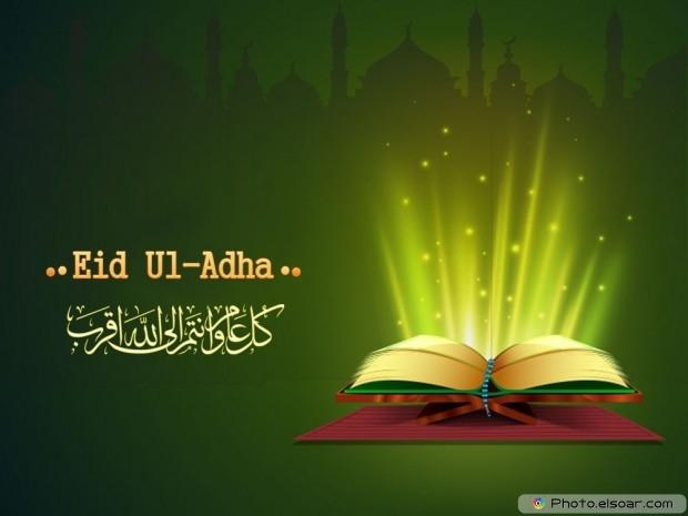 Gratis Idul Adha Gambar