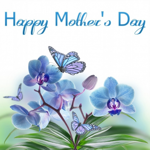 Happy Mothers Day On Spring Flowers Card A