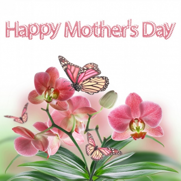 Happy Mothers Day On Spring Flowers Card B