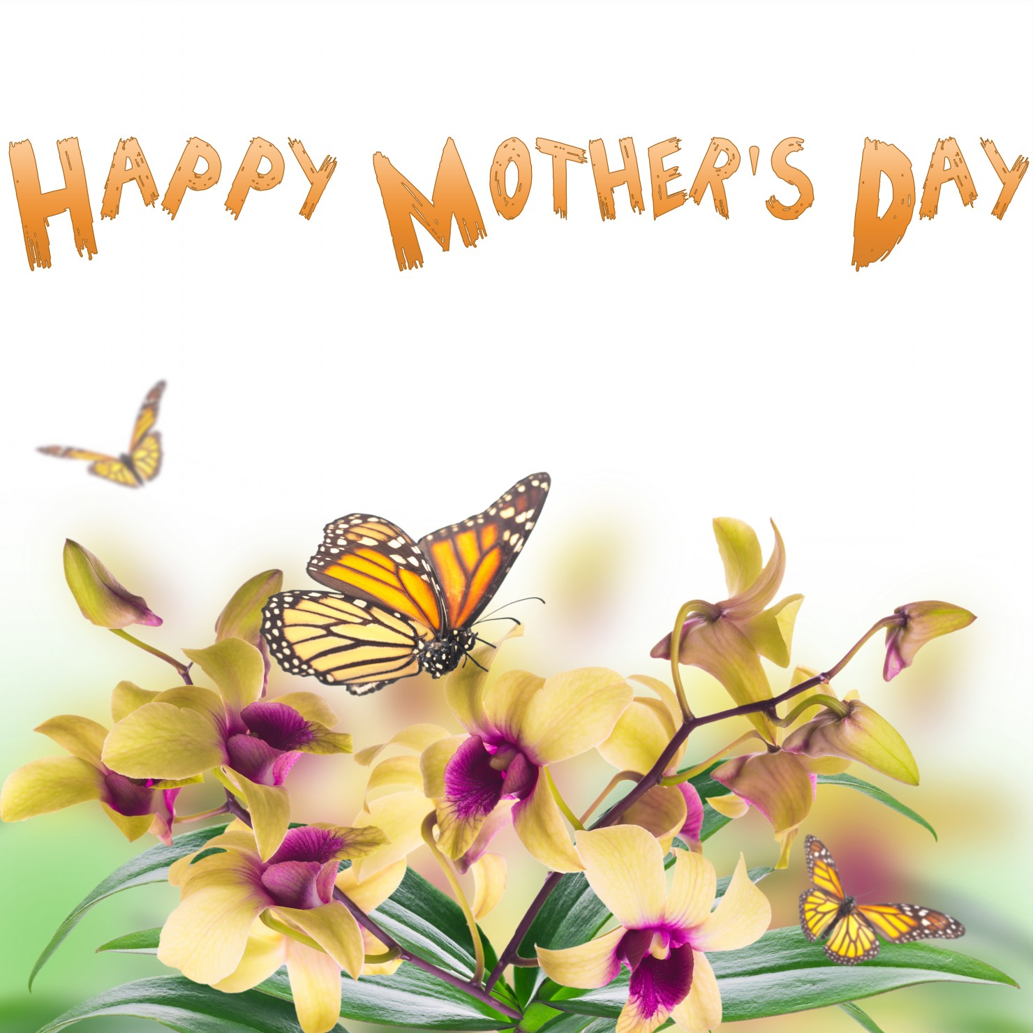 Happy Mothers Day On Spring Flowers Cards • Elsoar
