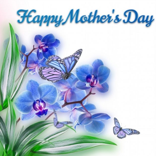 Happy Mothers Day On Spring Flowers Card D