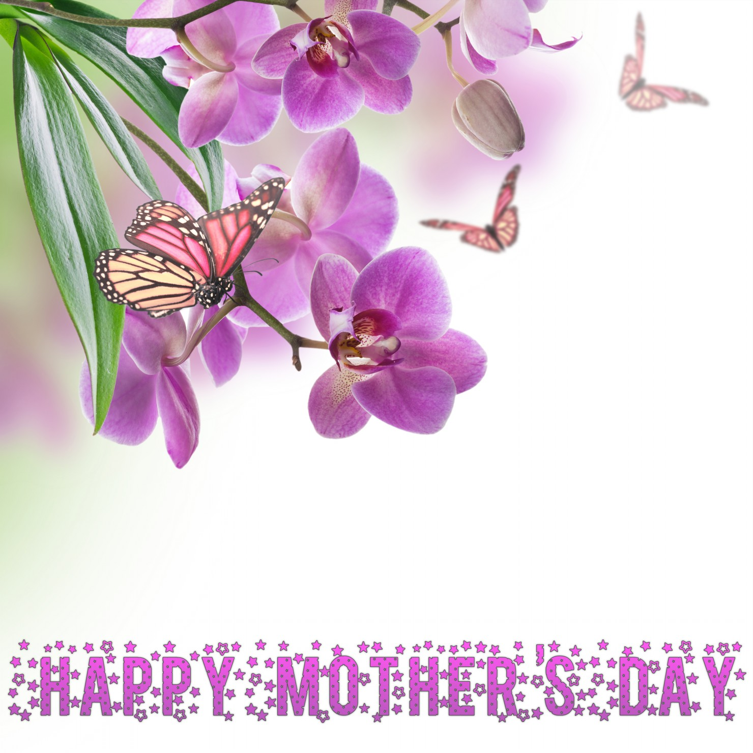Happy Mothers Day On Spring Flowers Card E