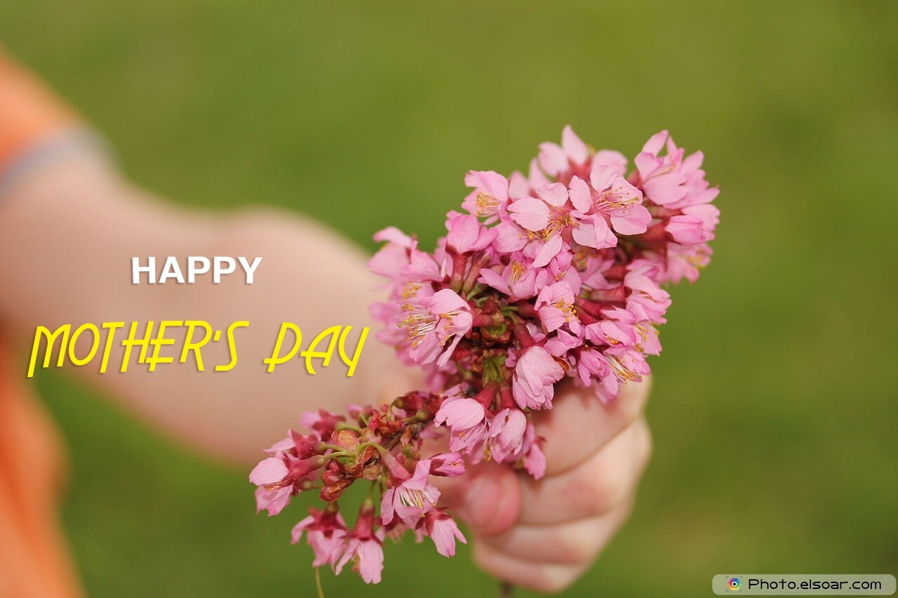 Happy Mother's Day with flowers gift