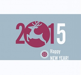 Happy New Year 2015 For Wives