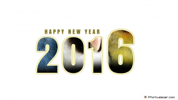 Happy New Year 2016 HD-Wallpaper