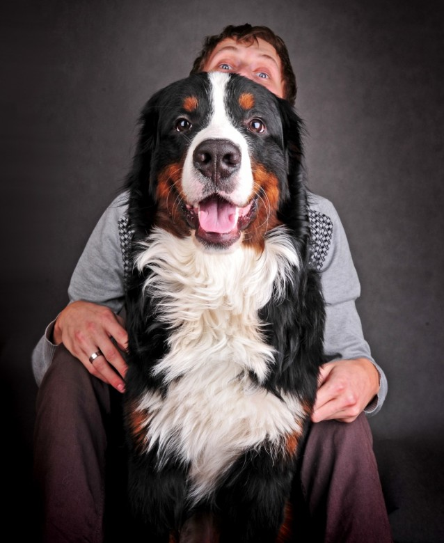 Happy man with beautiful Bernese