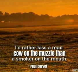 I'd rather kiss a mad