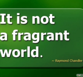 It is not a fragrant