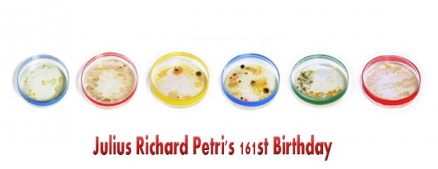 Petri Dish, Technology, Bacteria, Sciences, Birthday, Growth, Mold, Animation