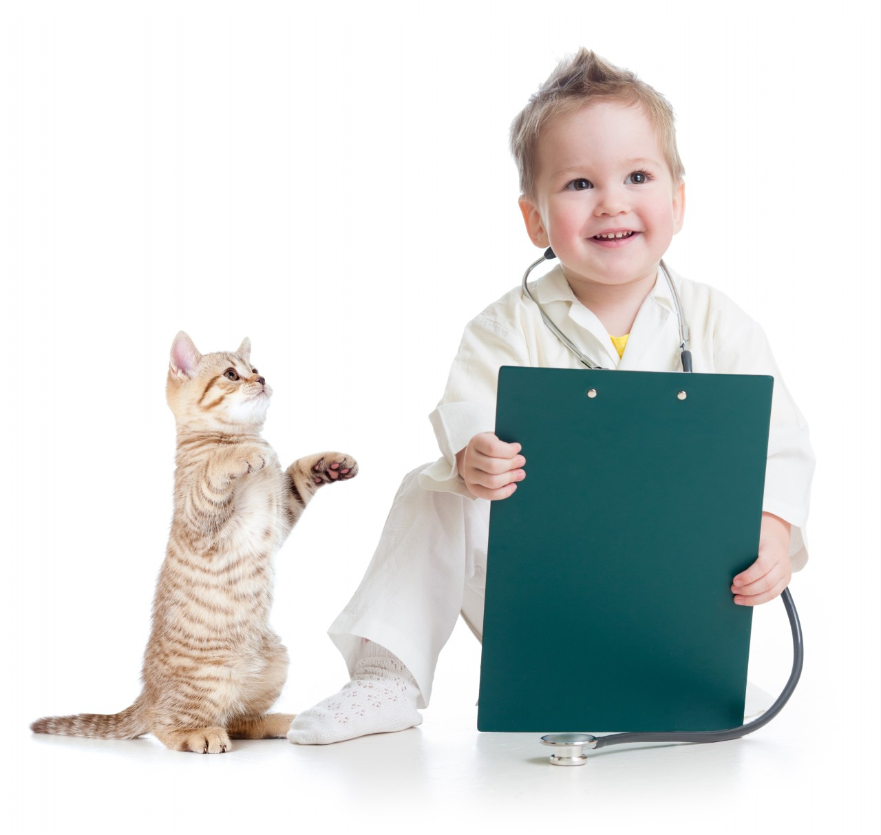 doctor kid Kid playing doctor with cat