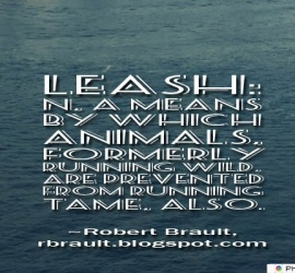 Leash n, a means by which animals