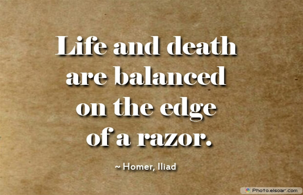 Life and death are balanced