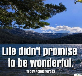 Life didn't promise to be wonderful