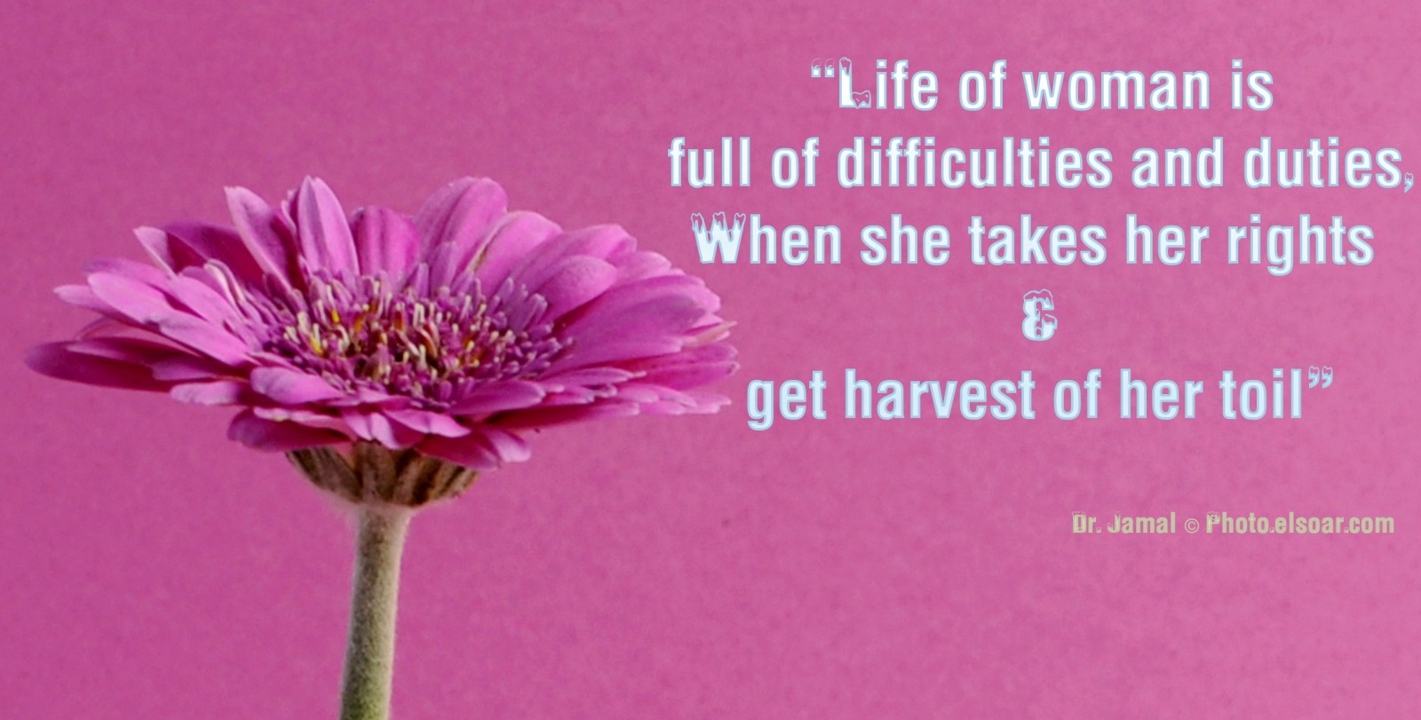 Women's Day Quotes and Sayings