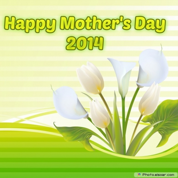 Magnificent 2014 Mother's Day Free Card With flowers