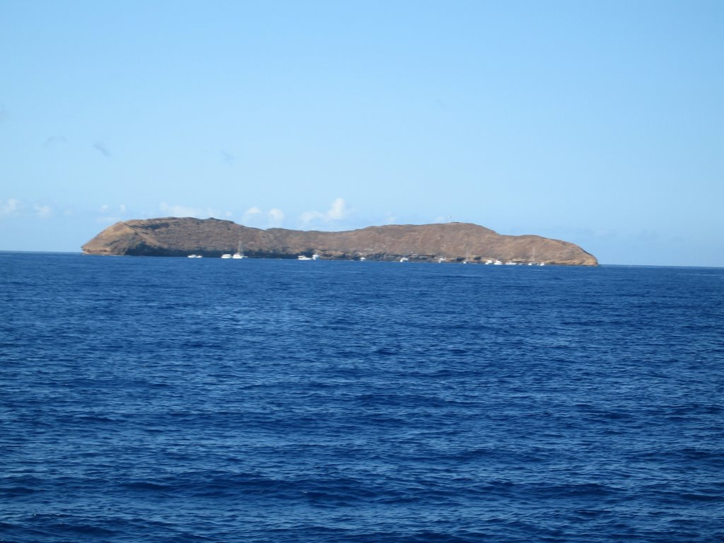 Molokini Island Pictures