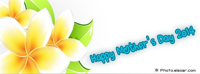 Best FB cover Happy Mother's Day 2014 next to blooming Flowers