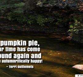 O' pumpkin pie, your time has come