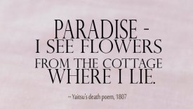 Paradise – I see flowers from the cottage where I lie