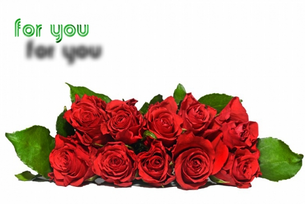 Picture of a Beautiful Bouquet of Roses 1